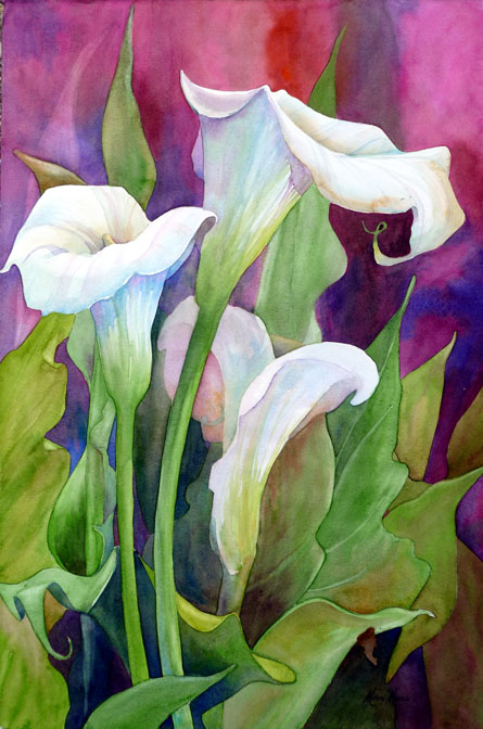 Calal Lilies I 22x14
