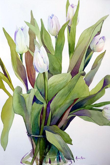 White Tulip Explosion I, 22x14 framed 28x22 $600