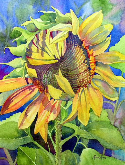 Shy Sunflower 14x10