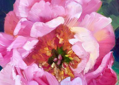 Pink Peopny 8x8 oil, $75