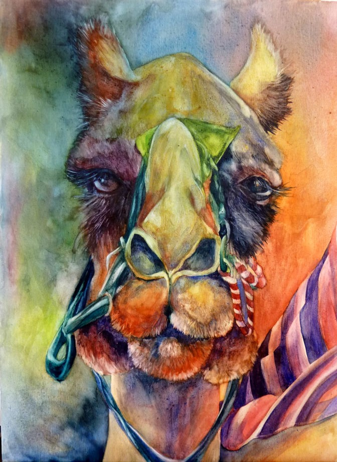 Camel for David watercolor on canvas
