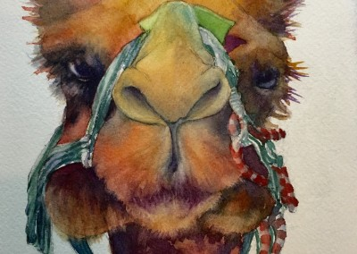 "Ted the Camel, 6""x6"" watercolor on paper in a 9x9 black frame, $100"