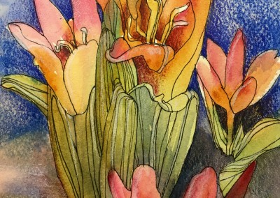 "Tiny Tulips, 8""x6""  watercolor, ink and colored pencils in a 12x9 mat, $75"