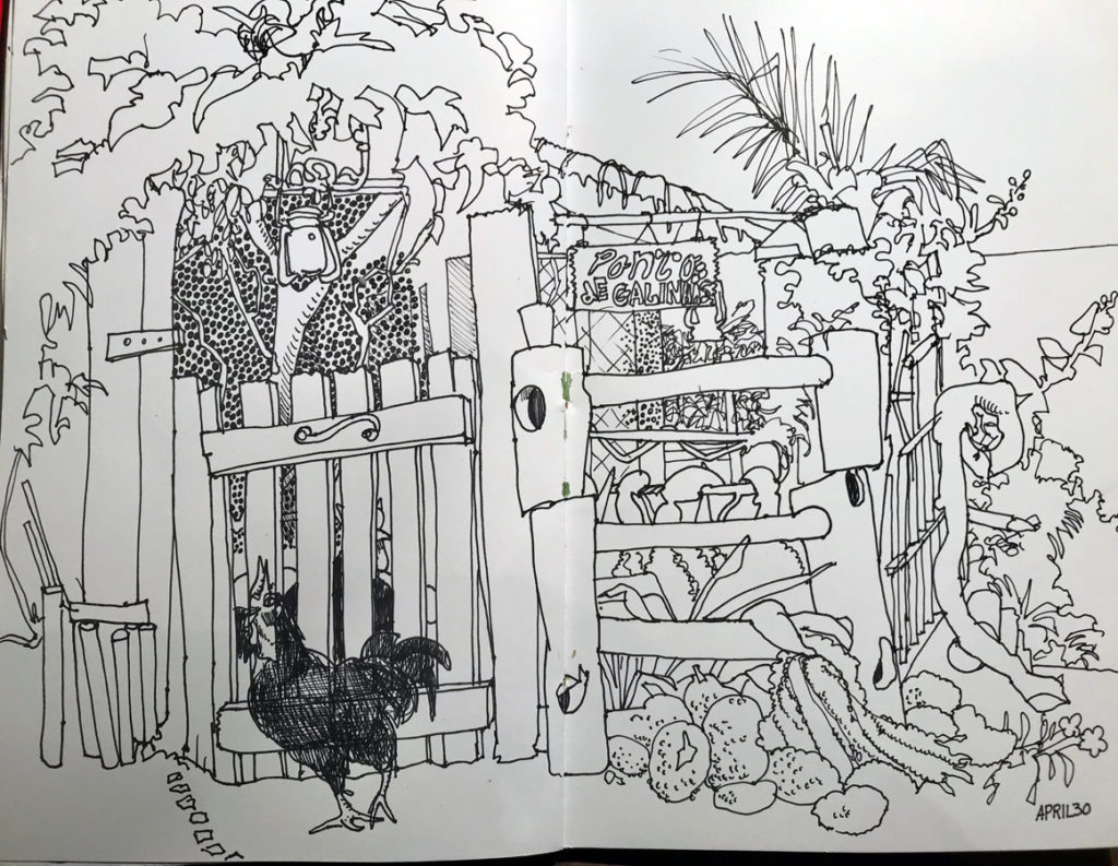 Ilhabela Brazil sketch